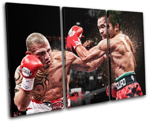 Cotto Pacquiao Boxing Sports - 13-2201(00B)-TR32-LO